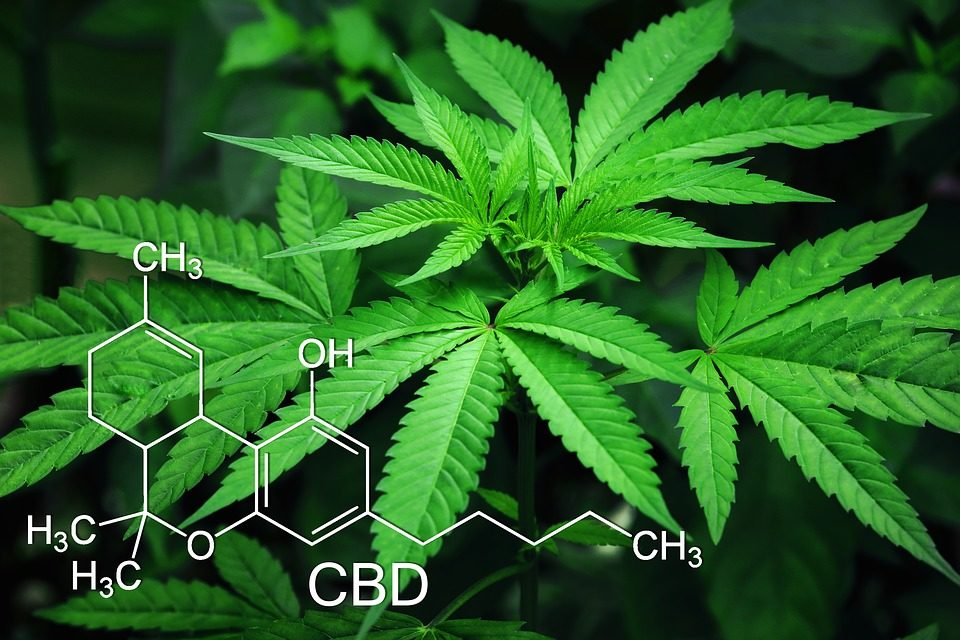 Cannabidinol, CBD, chemische  Formel, Cannabis, Marjjuana